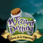 wizard destiny